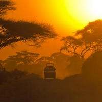 Digit Western Cape | Safari, Travel & Tours